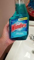 Windex Original Glass Cleaner Spray uploaded by Kathie L.