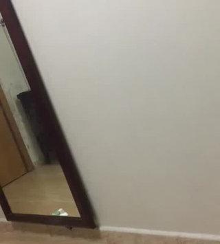 Video of Garnier Fructis Sleek & Shine Conditioner uploaded by Eman E.