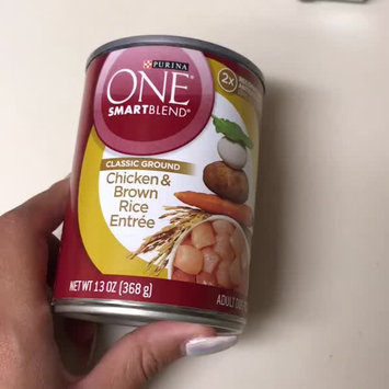 Video of PURINA ONE® Smartblend Adult Dog Food Chicken & Brown Rice Entree uploaded by Glory M.