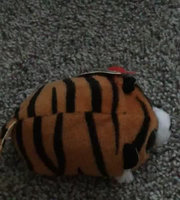 Teeny Tys Soft Toy - Gypsy uploaded by Emi R.