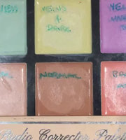 Profusion Cosmetics Absolute Conceal Palette Multi-Colored uploaded by Jessica O.