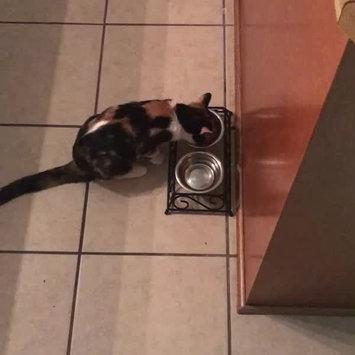 Video of Purina Kitten Chow PurinaA Kitten ChowA Nurture Kitten Food uploaded by Torie P.