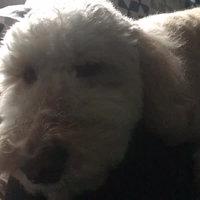 FURminator  deShedding Tool for Medium Dogs uploaded by Loredana S.