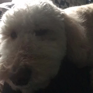 Video of FURminator  deShedding Tool for Medium Dogs uploaded by Loredana S.